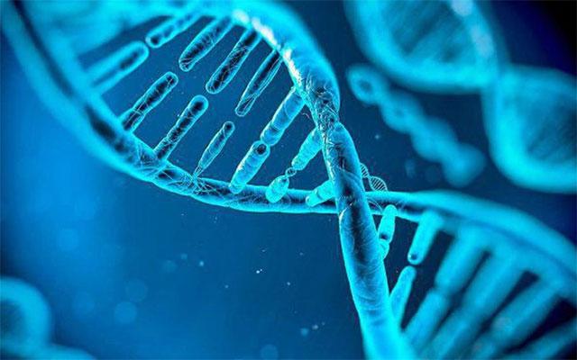 RLR cho phép thực hiện một số thứ mà CRISPR không thể làm được.