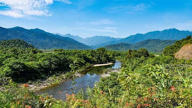 Vườn Quốc gia Vũ Quang được coi là mỏ loài mới của Việt Nam.