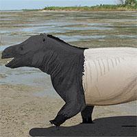 Phát hiện dấu chân sớm nhất của động vật có vú trên bờ biển
