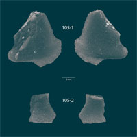 """Kho báu hắc diện thạch 9.000 năm """"gây sốc"""" xuất hiện dưới đáy hồ"""
